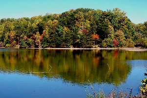 fall-colors-3-blog.jpg