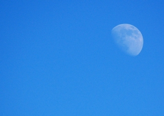 afternoon-moon.jpg