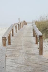 beach-fog.jpg