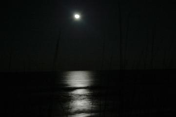 moon_oats.jpg