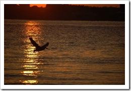 Sunset 0325 34