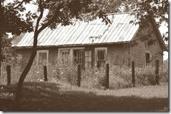 Abandoned House 2 Sepia