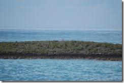 Patton Island 6