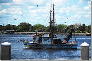 Shrimp Boat Nguyn