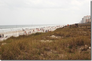 Beachscape 2