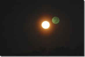 Cent Fla Moonrise
