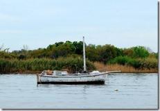 Derelict Sailboat